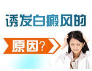 女性白癜风症状表现有哪些